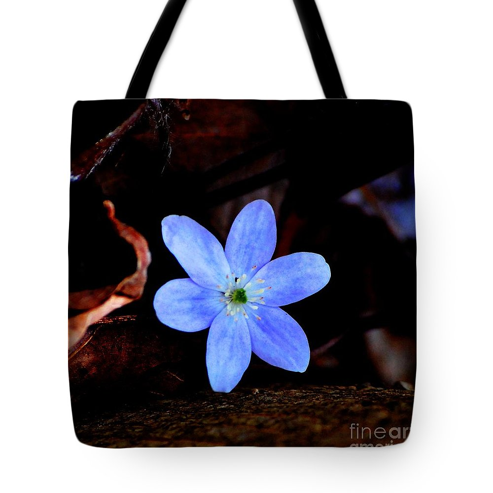 Digital Photo Tote Bag featuring the photograph Wild Blue by David Lane