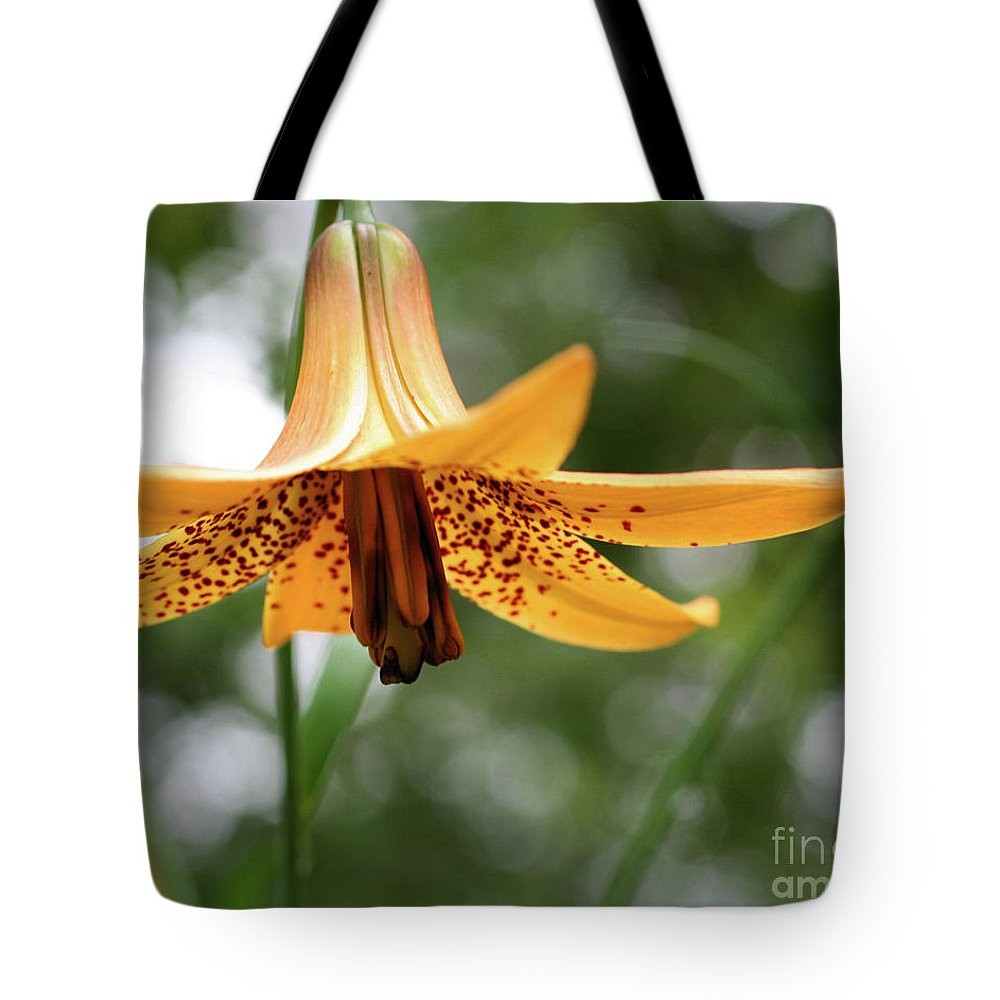Flower Tote Bag featuring the photograph Wild Canadian Lily by Smilin Eyes Treasures