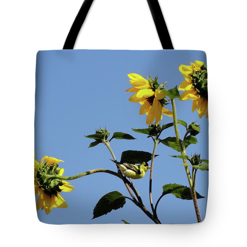 Canary Tote Bag featuring the photograph Wild Canary Sunflowers by Shannon Grissom