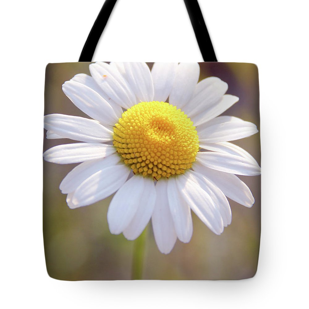 Flowers Tote Bag featuring the photograph Wild Flower by Paul Shefferly