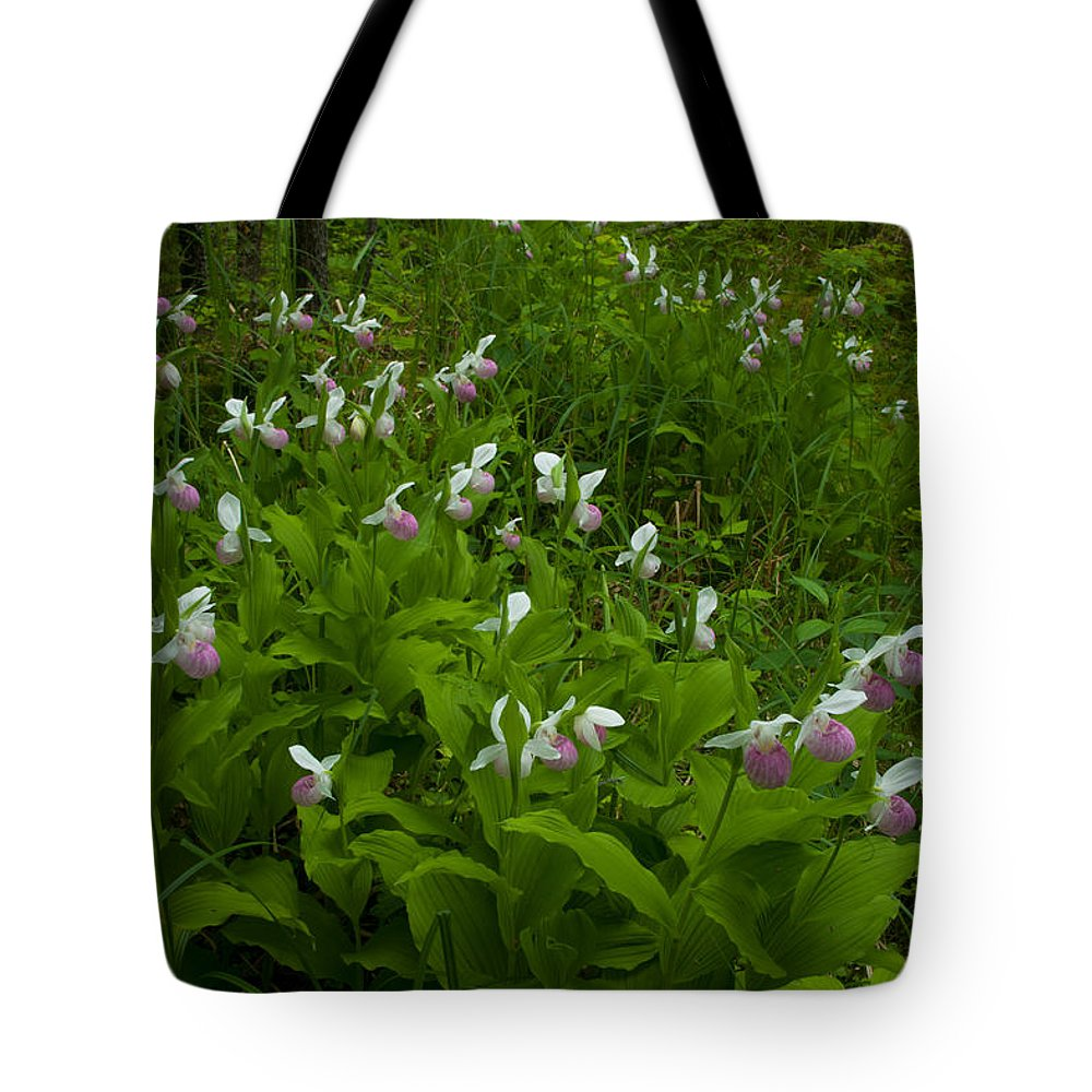 Wildflowers Tote Bag featuring the photograph Wild Garden #1 by Irwin Barrett