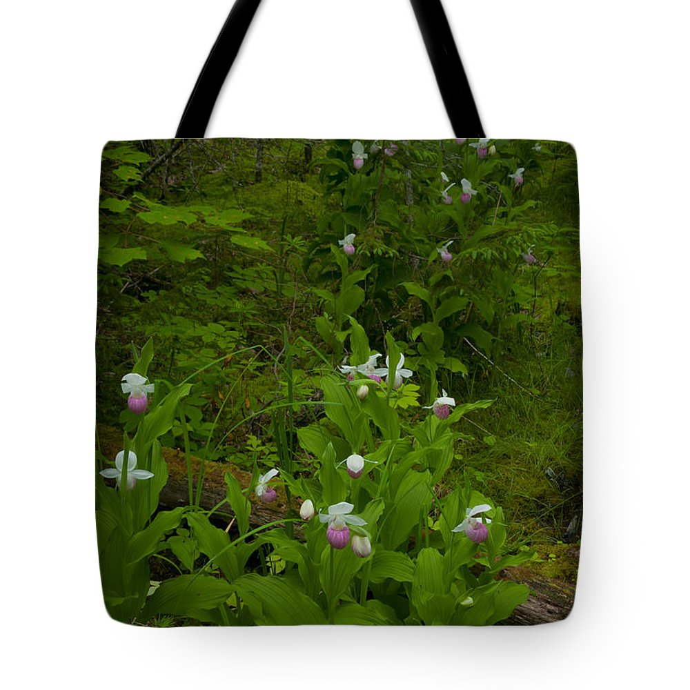 Wildflowers Tote Bag featuring the photograph Wild Garden #2 by Irwin Barrett