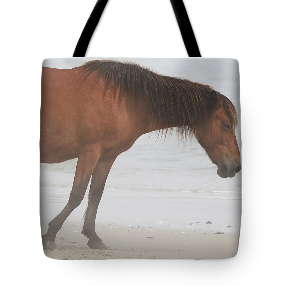 Wild Horses Tote Bag featuring the photograph Wild Horses On The Beach 2 by David Stasiak