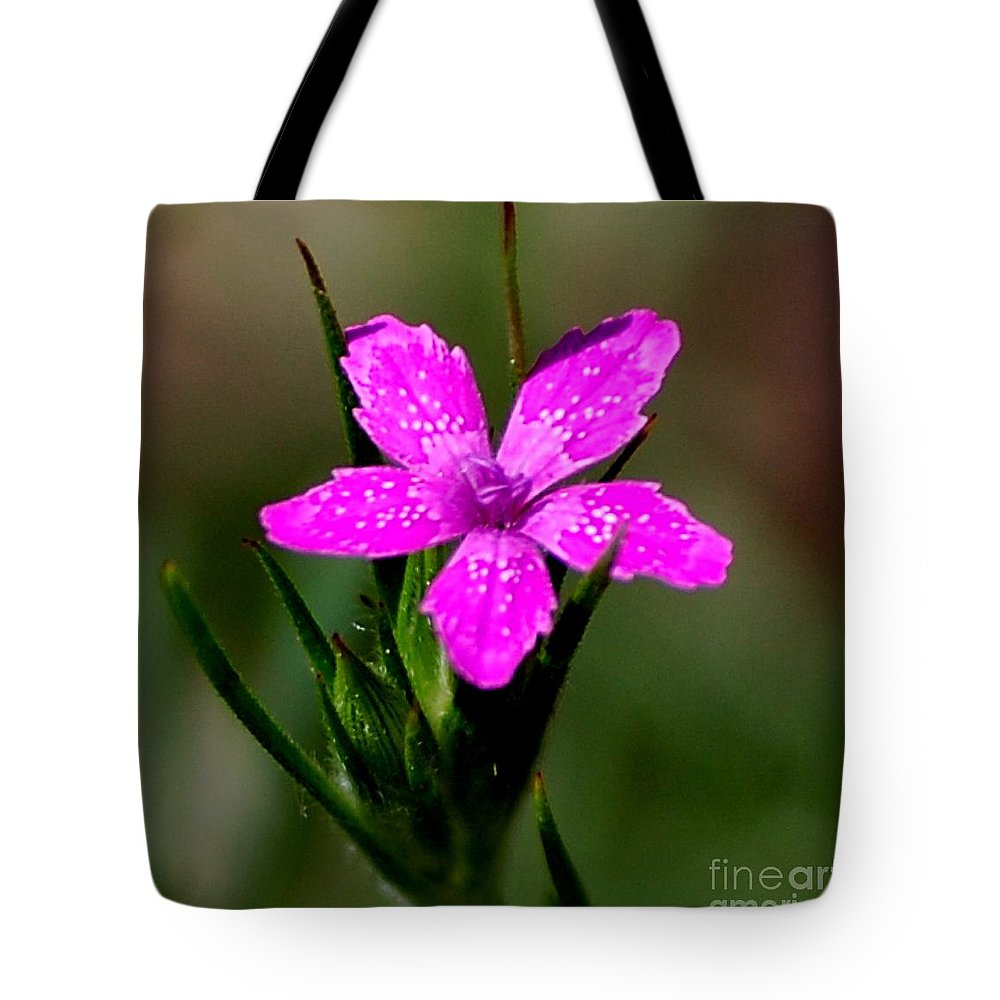 Digital Photo Tote Bag featuring the photograph Wild Pink by David Lane