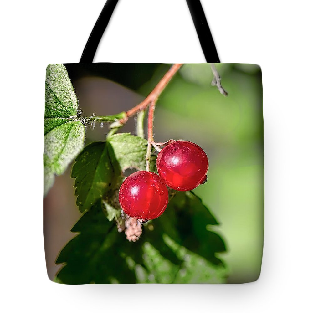 Wild Goosberry Tote Bag featuring the photograph Wild Red Goosberries by Leif Sohlman