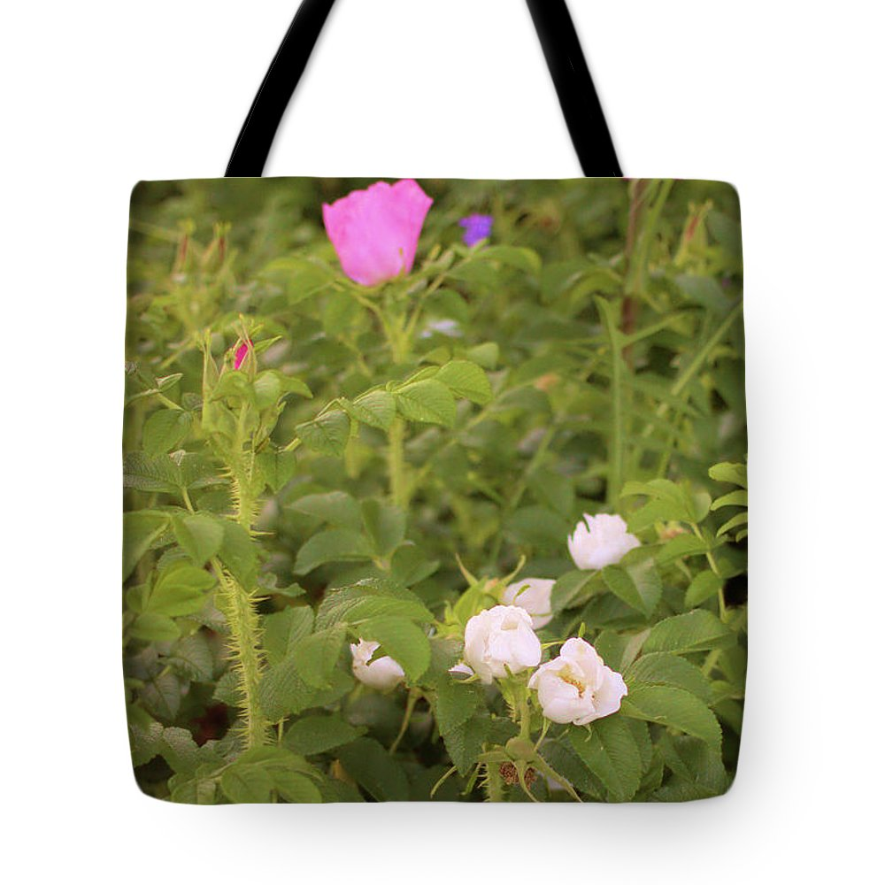 Wild Rose Tote Bag featuring the photograph Wild Rose by Robert McCulloch
