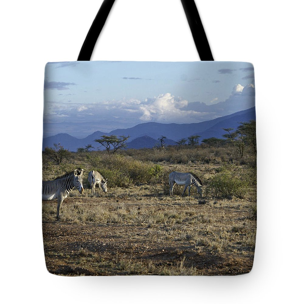 Africa Tote Bag featuring the photograph Wild Samburu by Michele Burgess