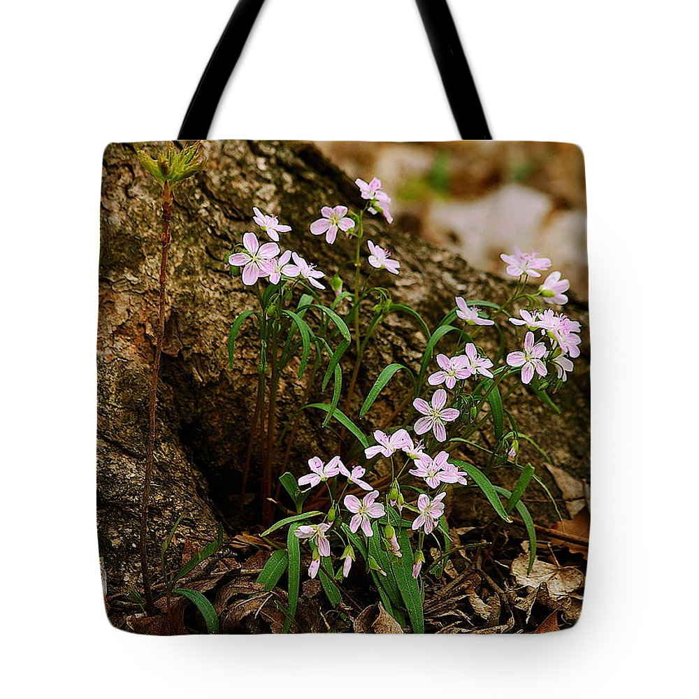 Spring Tote Bag featuring the photograph Wild Spring Beauty by Michael Peychich