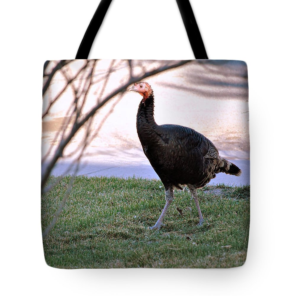 Wildlife Tote Bag featuring the photograph Wild Turkey. by Oscar Williams