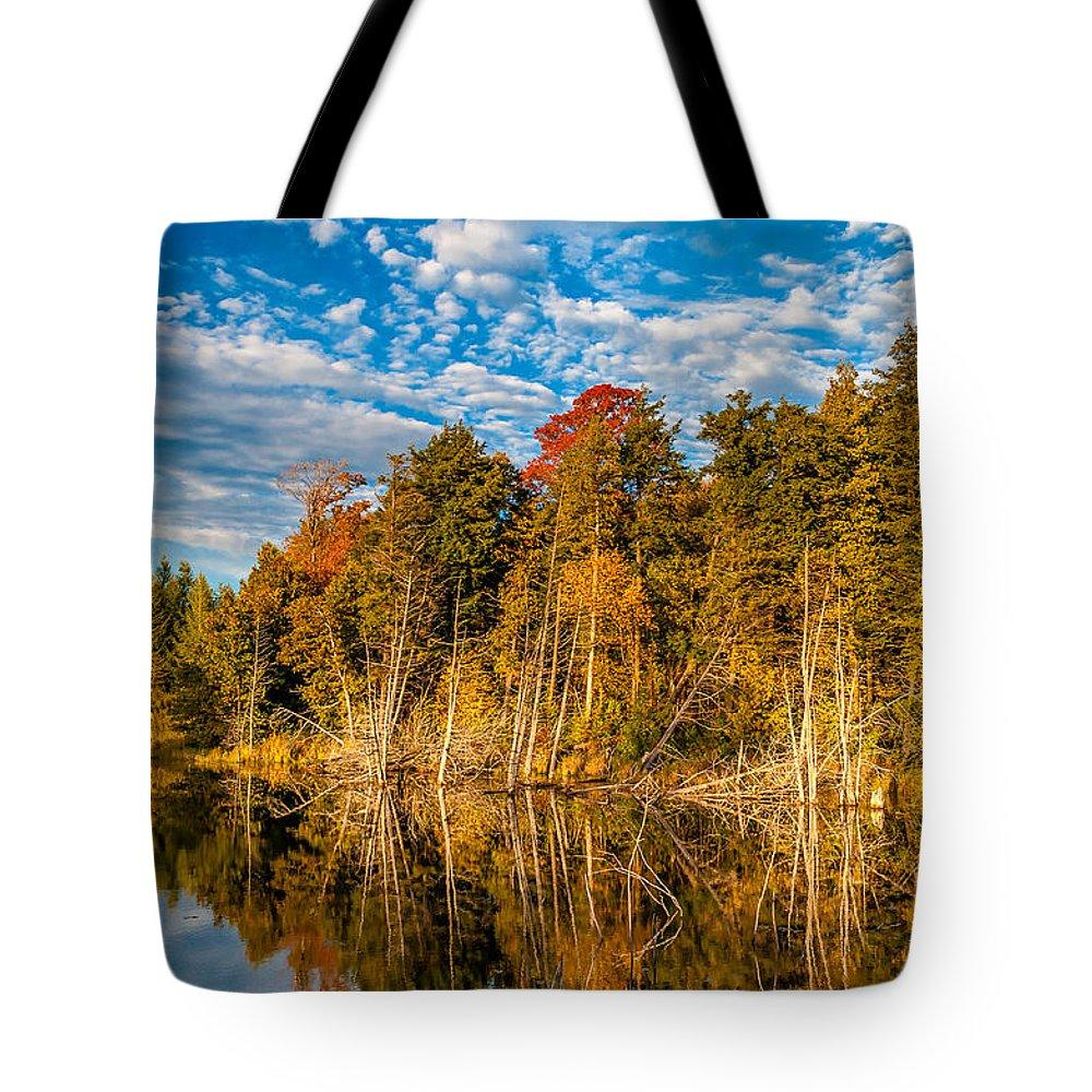 Steve Harrington Tote Bag featuring the photograph Wilderness Pond by Steve Harrington