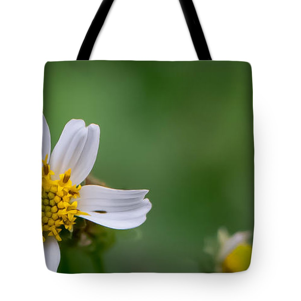 Daisy Tote Bag featuring the photograph Wildflower by Jan Herren