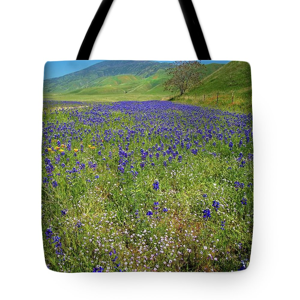 Tejon Ranch Tote Bag featuring the photograph Wildflower Mix At Tejon Ranch by Lynn Bauer