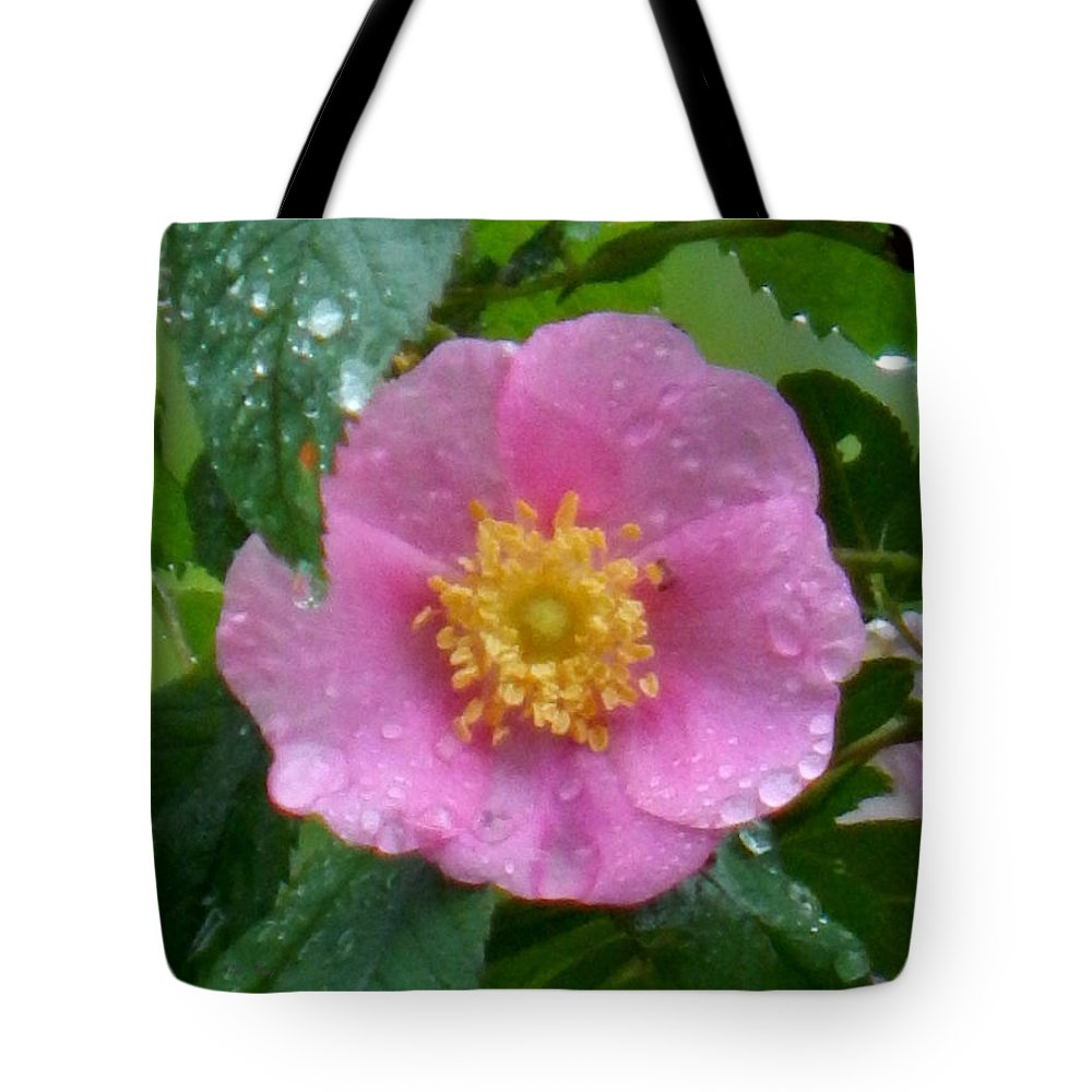 Spring Tote Bag featuring the photograph Wild's Pink Rose by Wild Thing