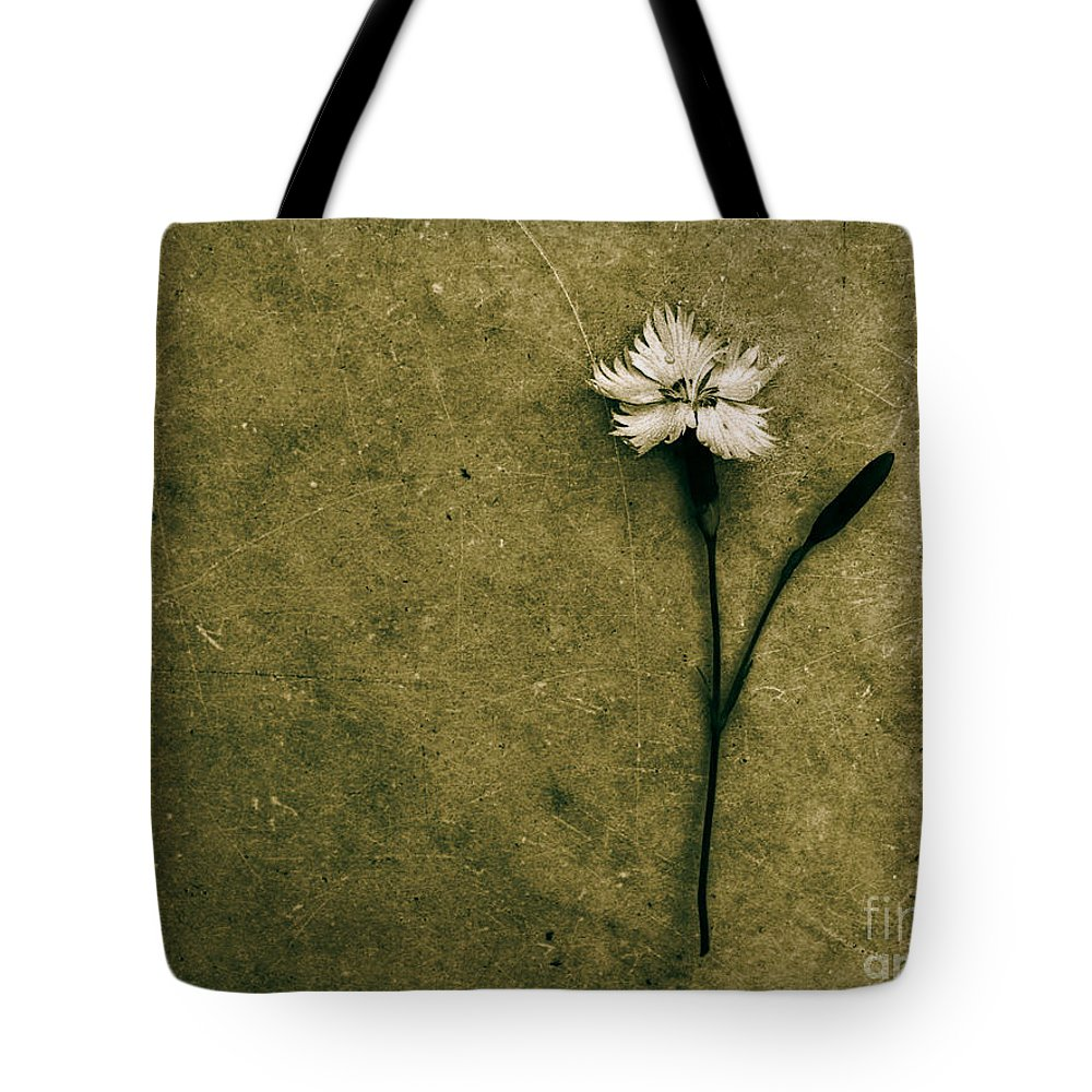 Dipasquale Tote Bag featuring the photograph Will You Stay With Me Will You Be My Love by Dana DiPasquale