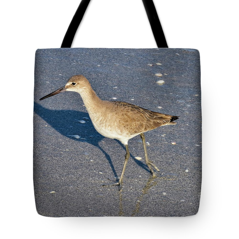 Sanibel Island Tote Bag featuring the photograph Willet And Shadow by Bob Phillips