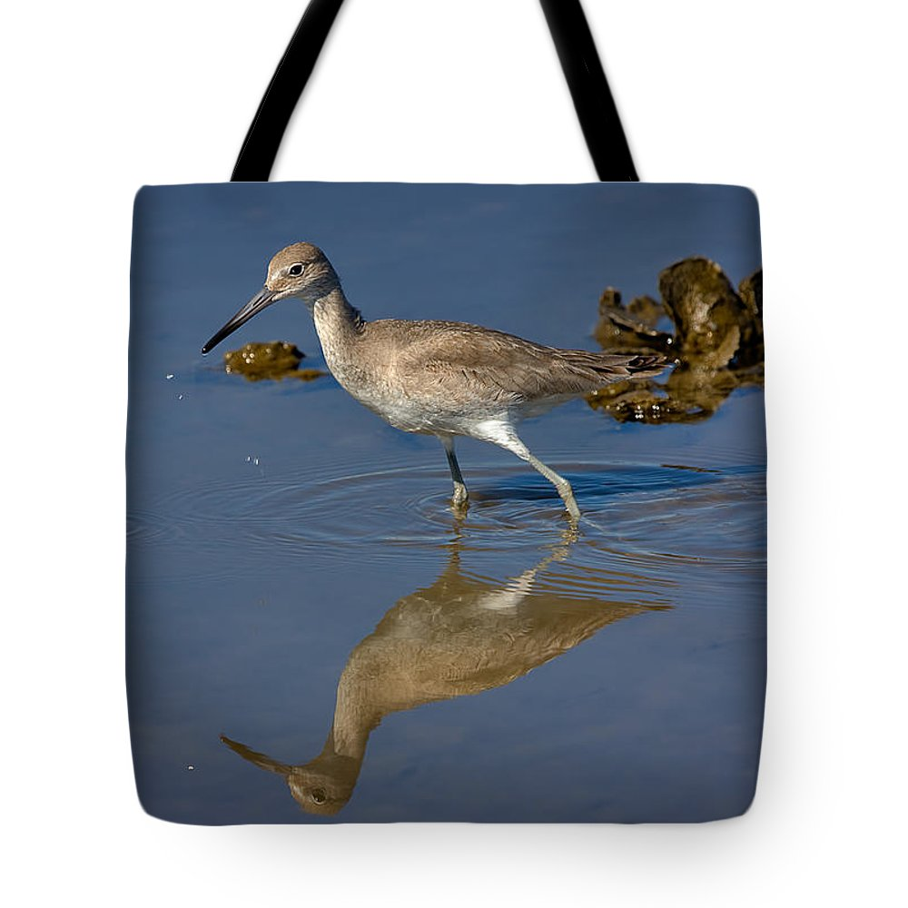 Nature Tote Bag featuring the photograph Willet Searching For Food In An Oyster Bed by Louise Heusinkveld