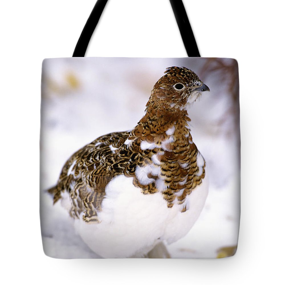 Alaska Tote Bag featuring the photograph Willow Ptarmigan by John Hyde - Printscapes