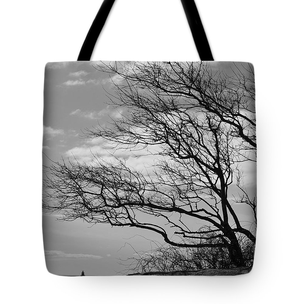 Tree Tote Bag featuring the photograph Wind Blown by Catherine Reusch Daley