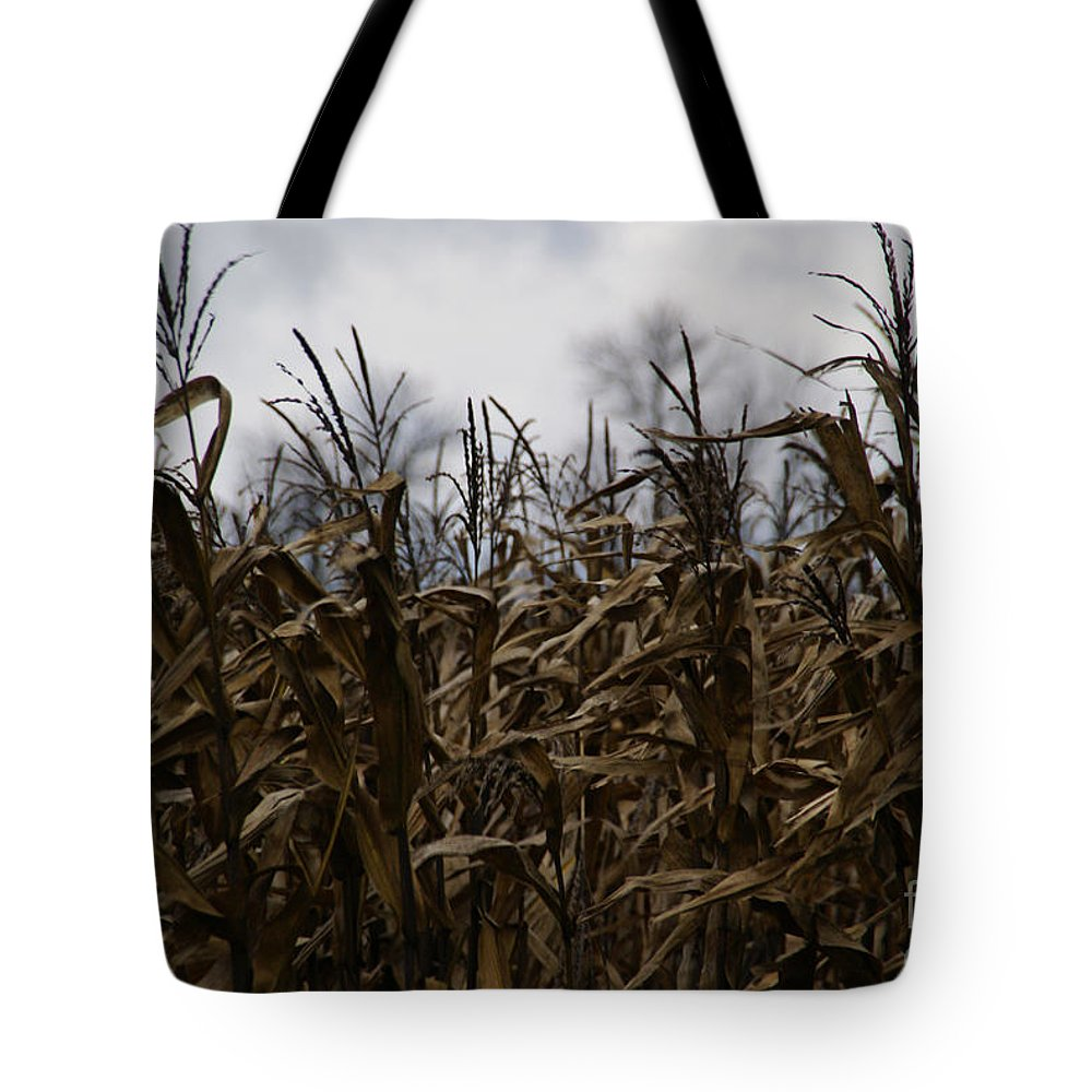 Corn Tote Bag featuring the photograph Wind Blown by Linda Shafer