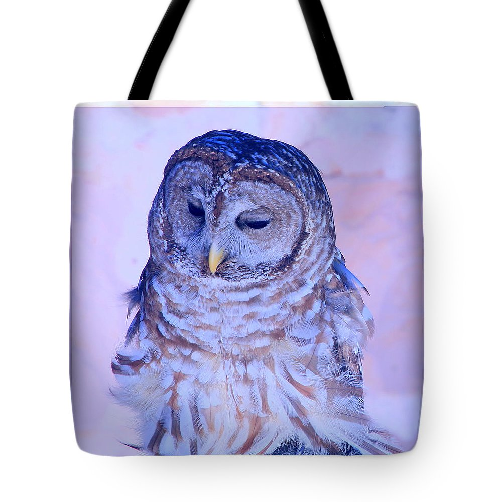 Barr Owl Tote Bag featuring the photograph Wind Blown Owl by Tanya Porter