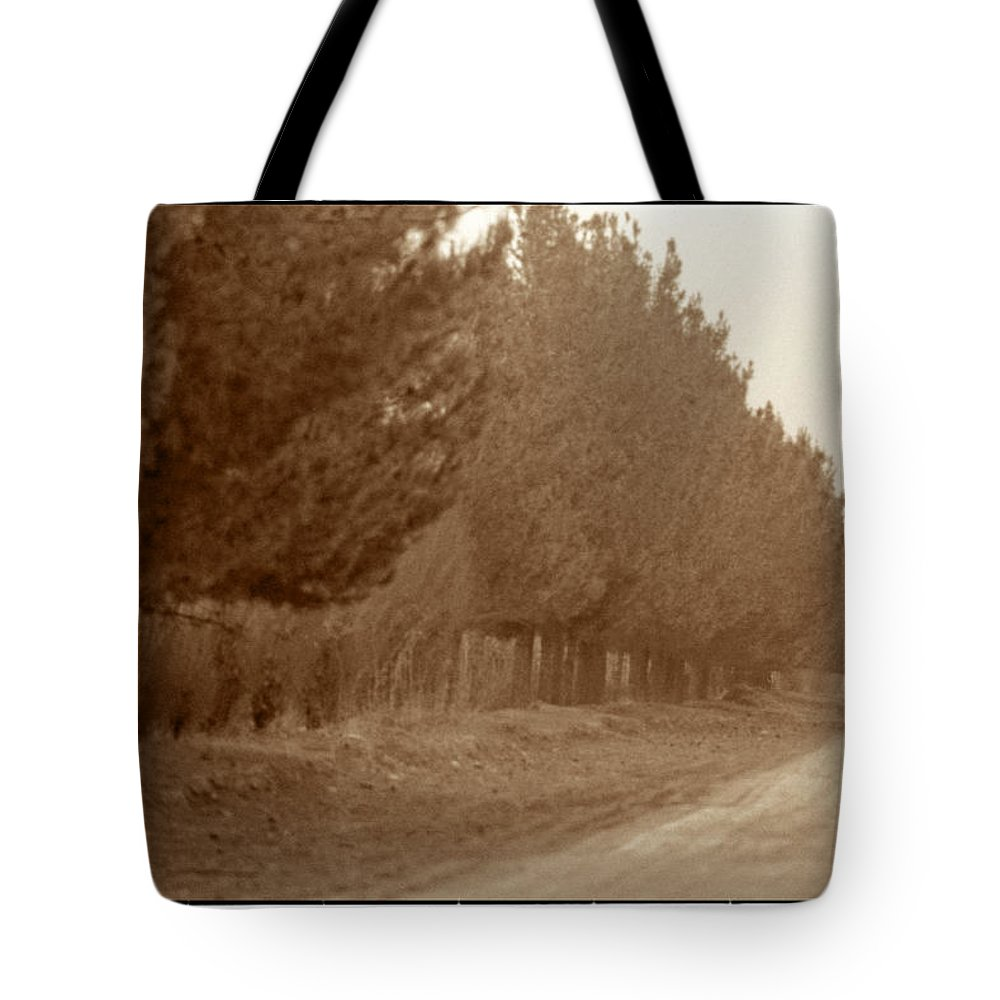 Iran Tote Bag featuring the photograph Windbreak, Central Iran by Michael Ziegler