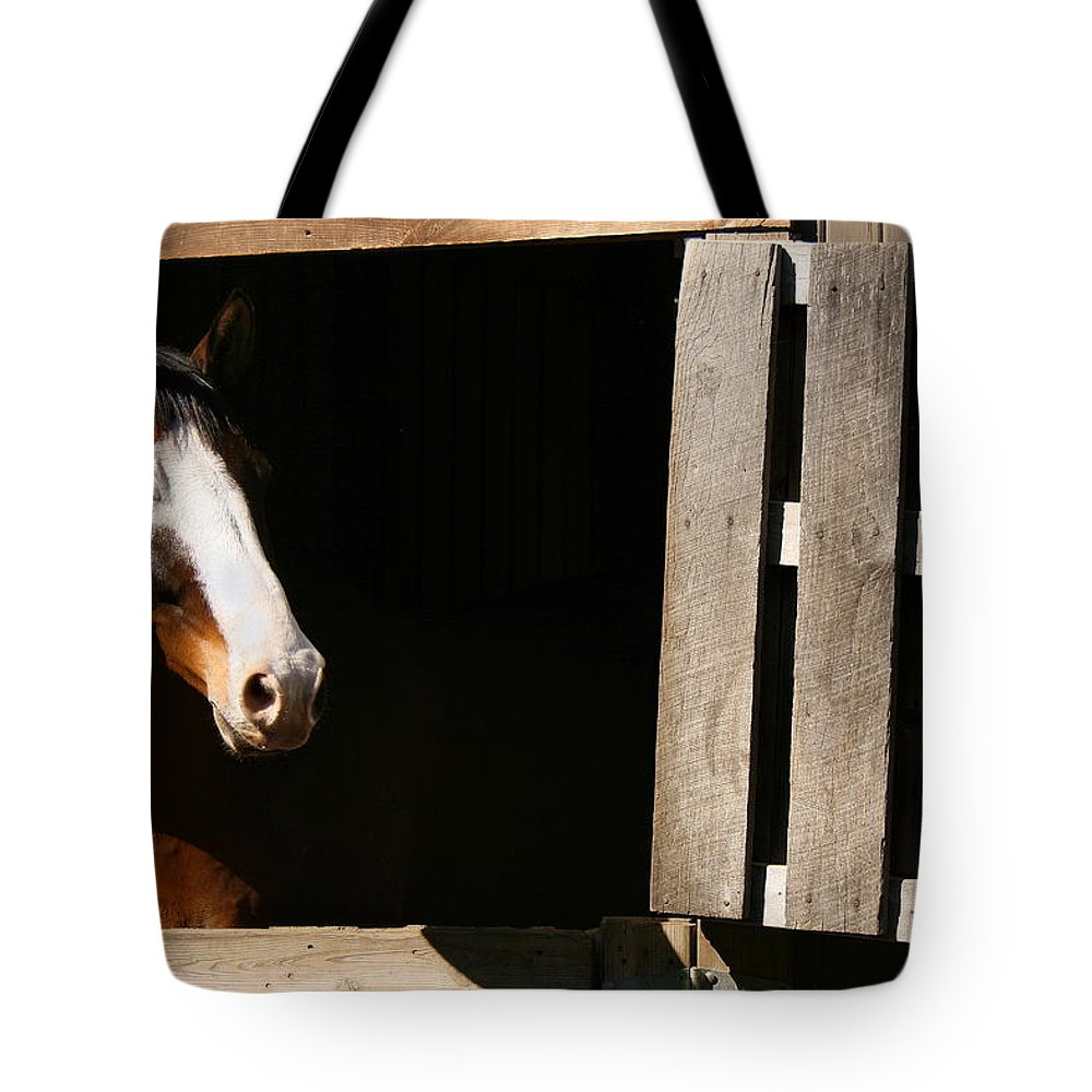 Horse Tote Bag featuring the photograph Window by Angela Rath