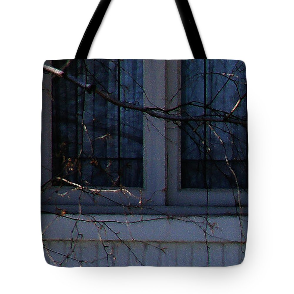 Blue Tote Bag featuring the photograph Window Blue - 2 by Linda Shafer