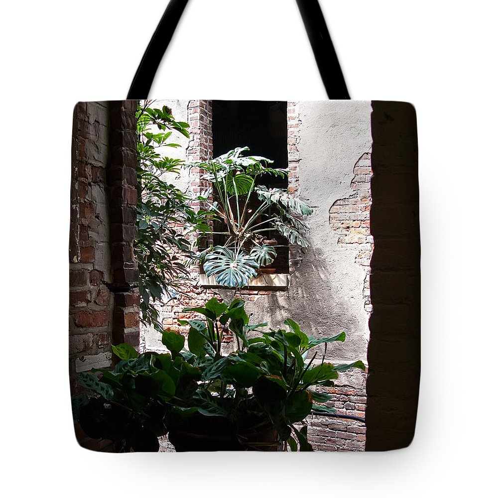 Window Tote Bag featuring the photograph Window Plants by Gary Prill