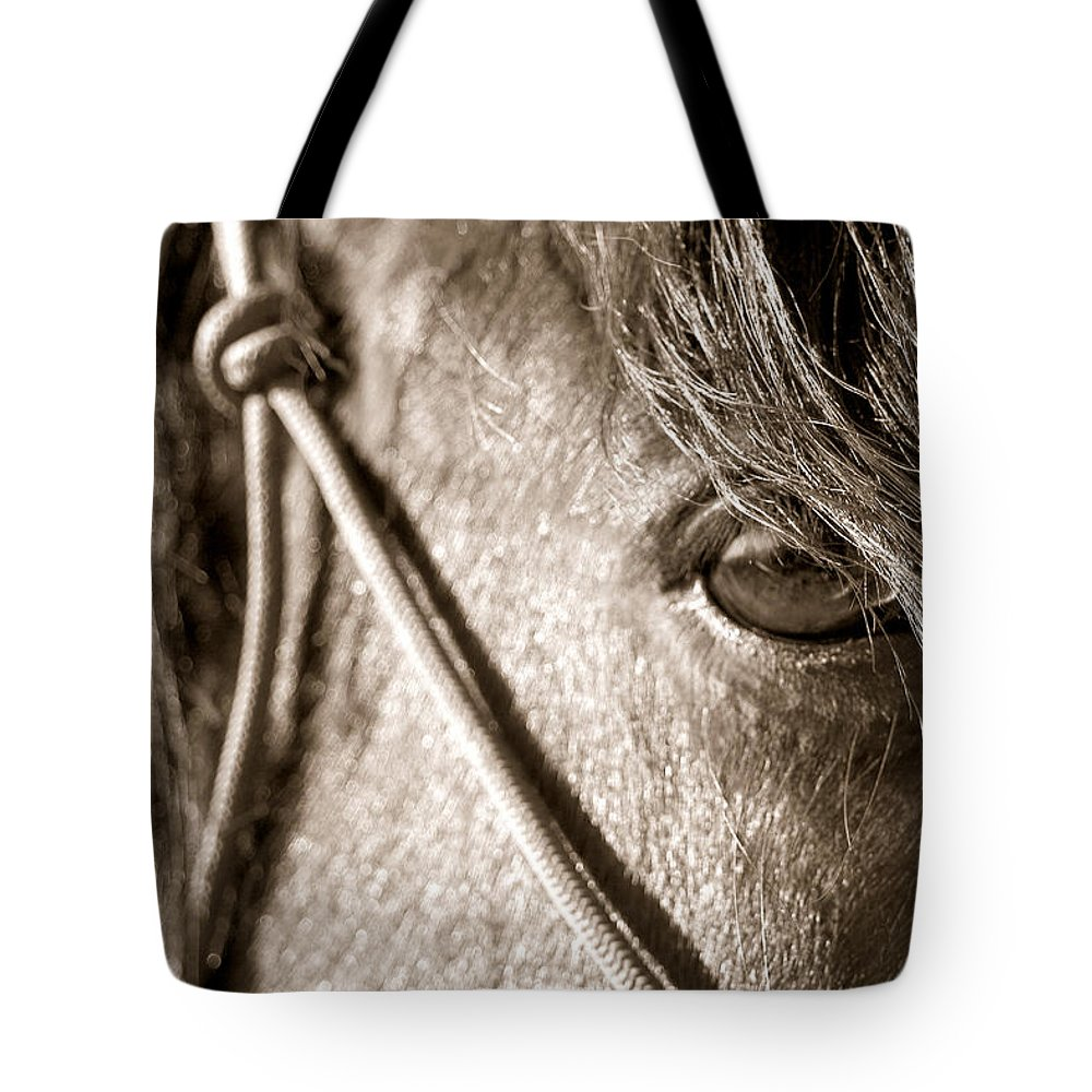 Horse Tote Bag featuring the photograph Window To The Soul by Christine Hauber