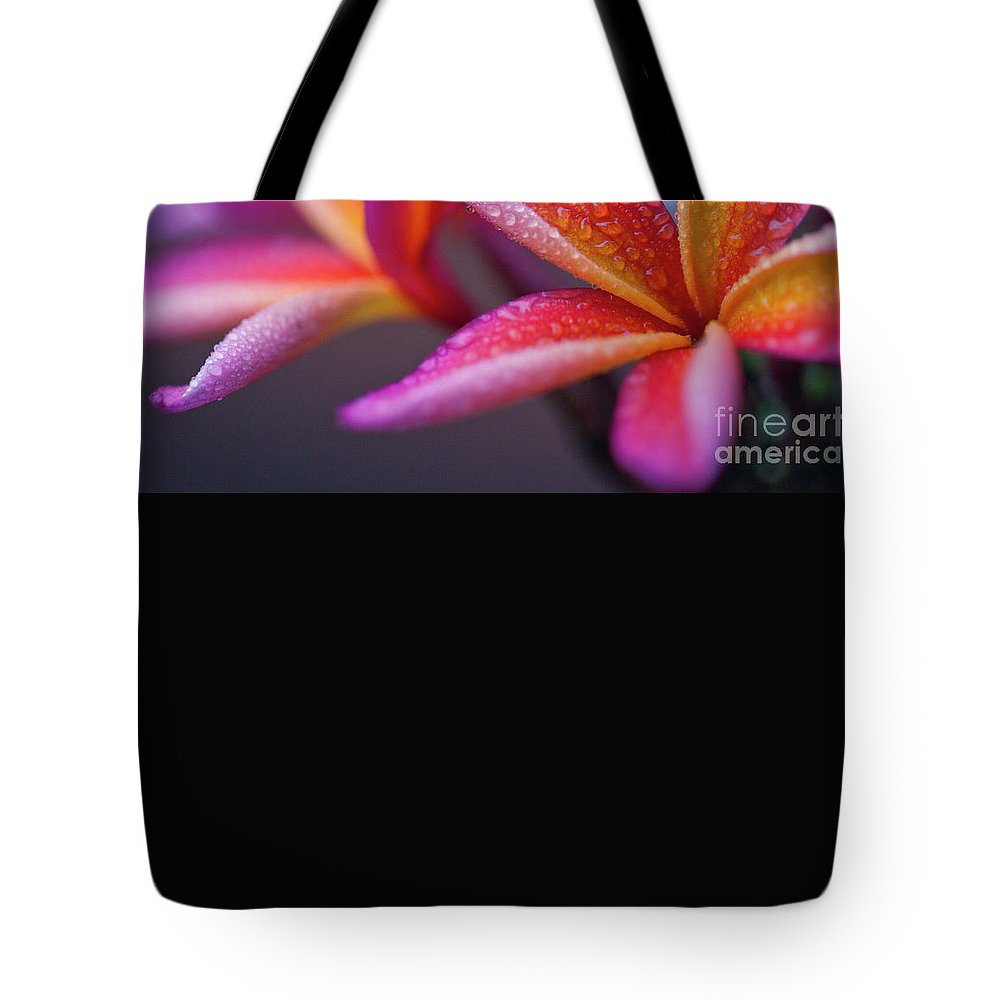 Tote Bag featuring the photograph An Innocent Moment by Sharon Mau