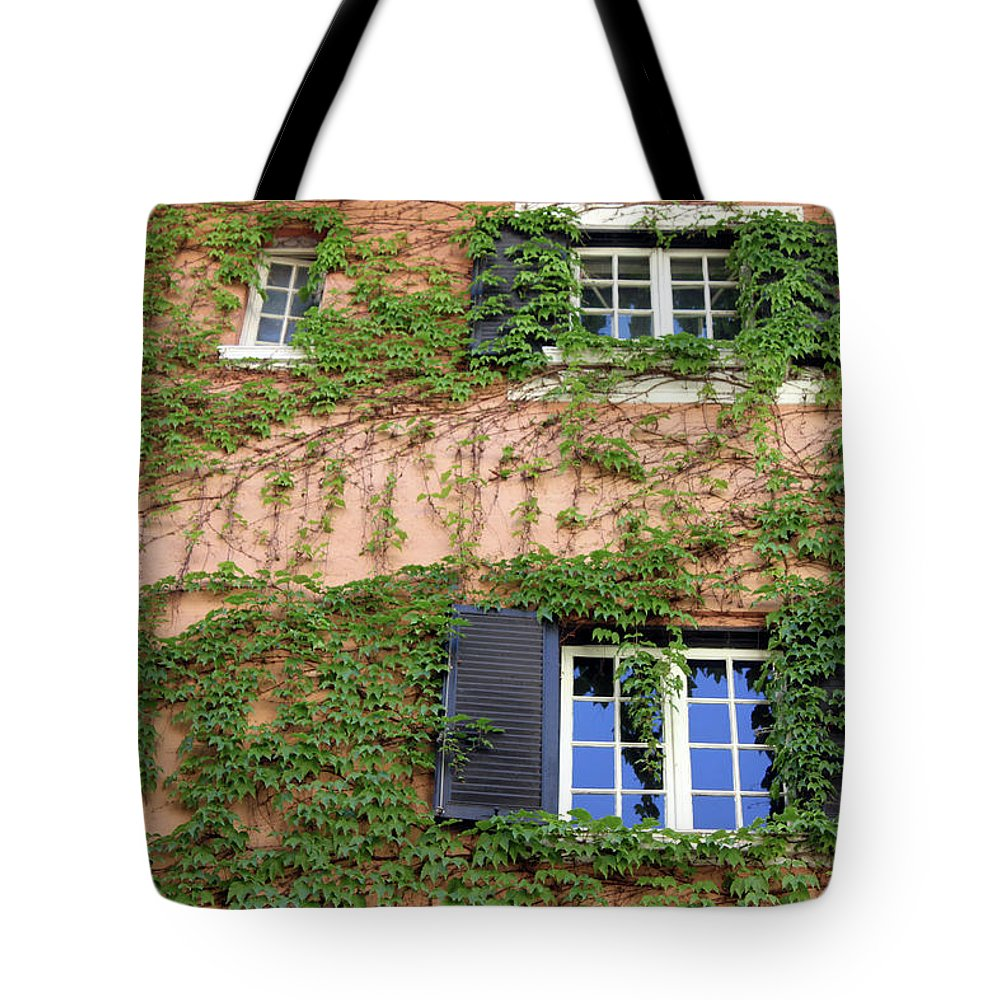 Window Tote Bag featuring the photograph Windows by Munir Alawi