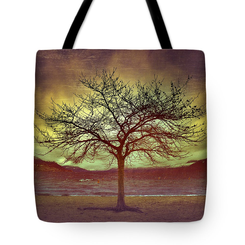 Wind Tote Bag featuring the photograph Windstorm At Skaha Lake by Tara Turner