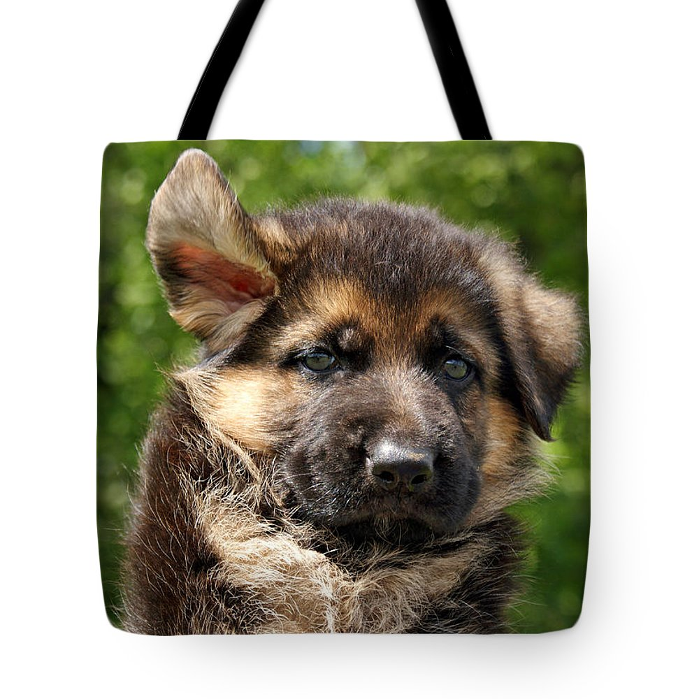 German Shepherd Tote Bag featuring the photograph Windy Day by Sandy Keeton