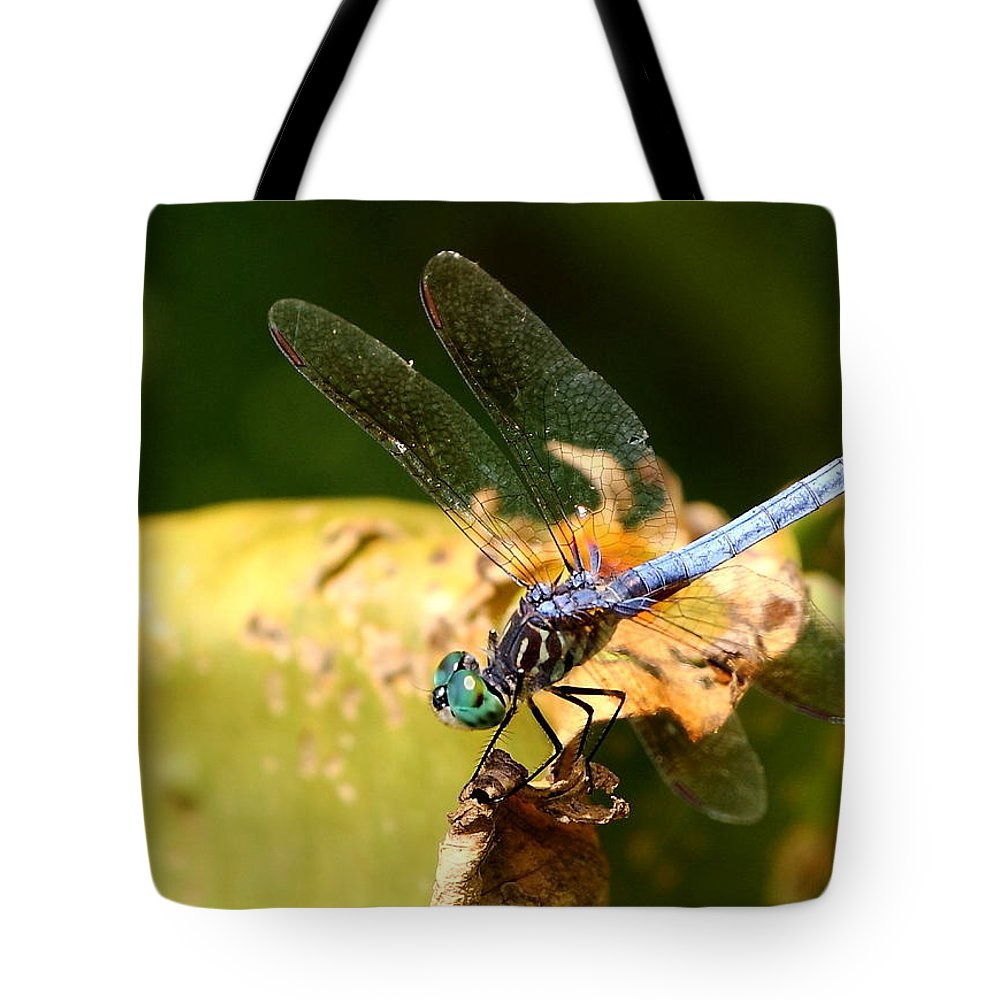 Nature Tote Bag featuring the photograph Winging It by David Rosenthal
