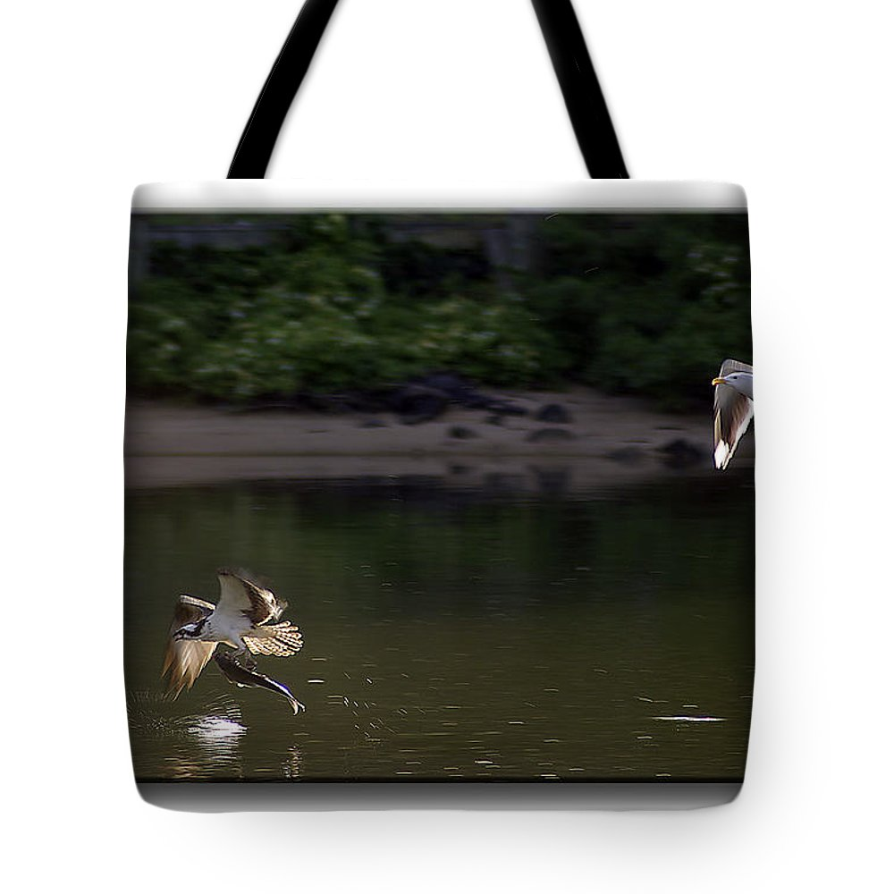 2d Tote Bag featuring the photograph Wingman by Brian Wallace