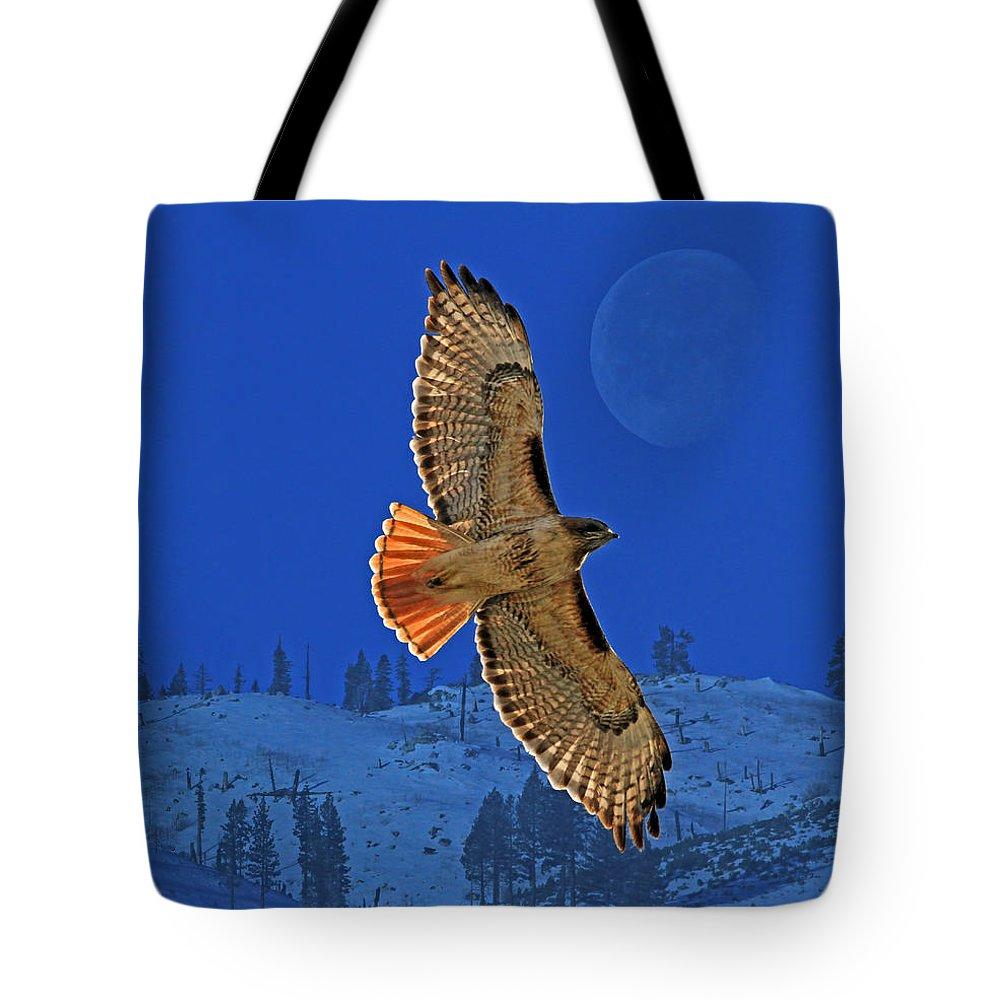 Hawk Tote Bags