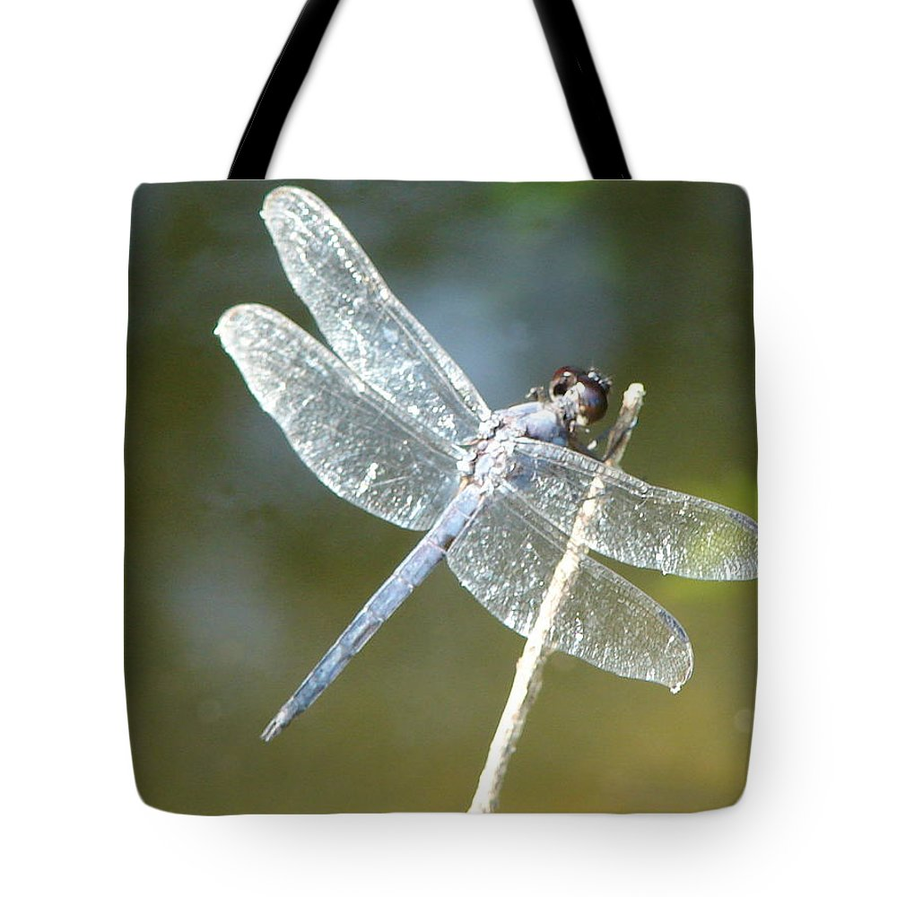 Dragonfly Wings Tote Bag featuring the photograph Wings by Luciana Seymour