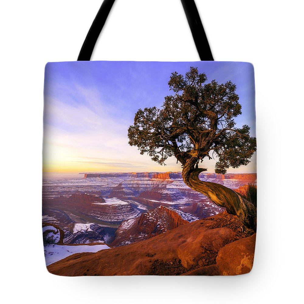 Winter At Dead Horse Tote Bag featuring the photograph Winter at Dead Horse by Chad Dutson