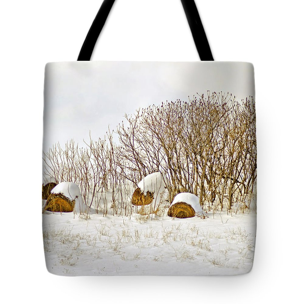 Hay Tote Bag featuring the photograph Winter Beauty by Deborah Benoit