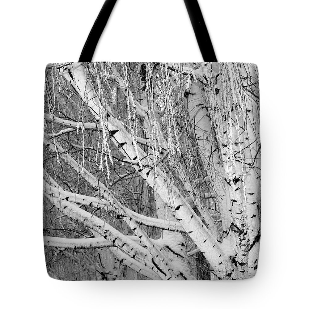 Birch Trees Tote Bag featuring the photograph Icy Winter Birch Tree by Carol Groenen