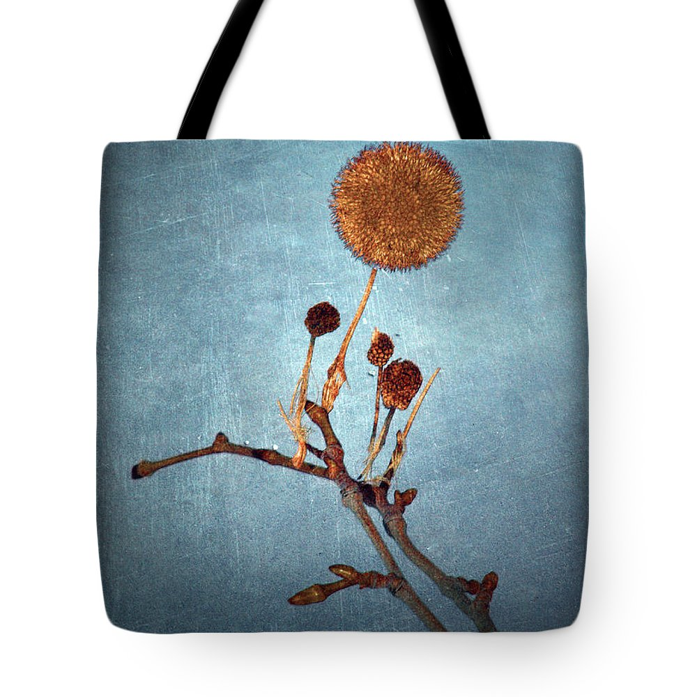 Blue Tote Bag featuring the photograph Winter Branch by Tara Turner