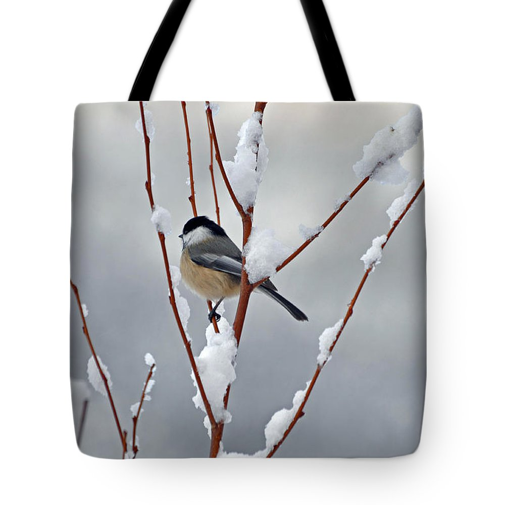 Berry Tote Bag featuring the photograph Winter Chickadee by Diane E Berry