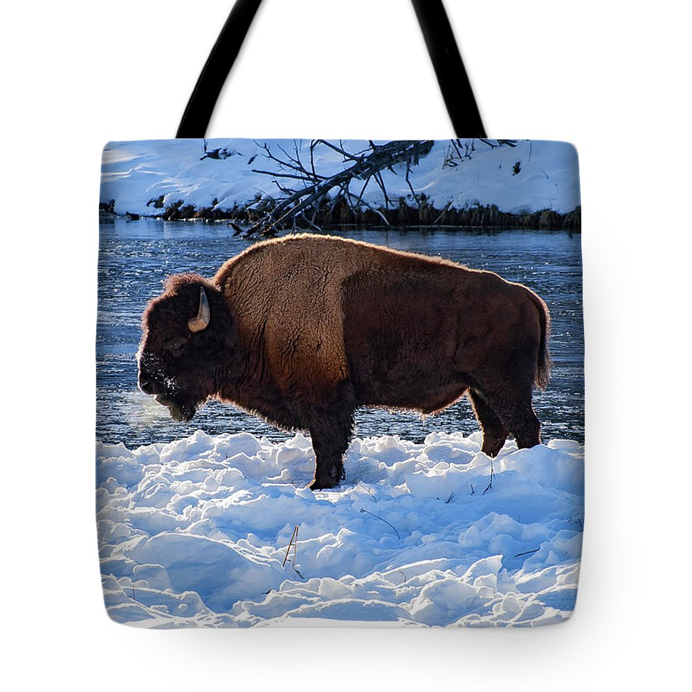 Yellowstone National Park Tote Bag featuring the photograph Winter Coat by Bob Phillips