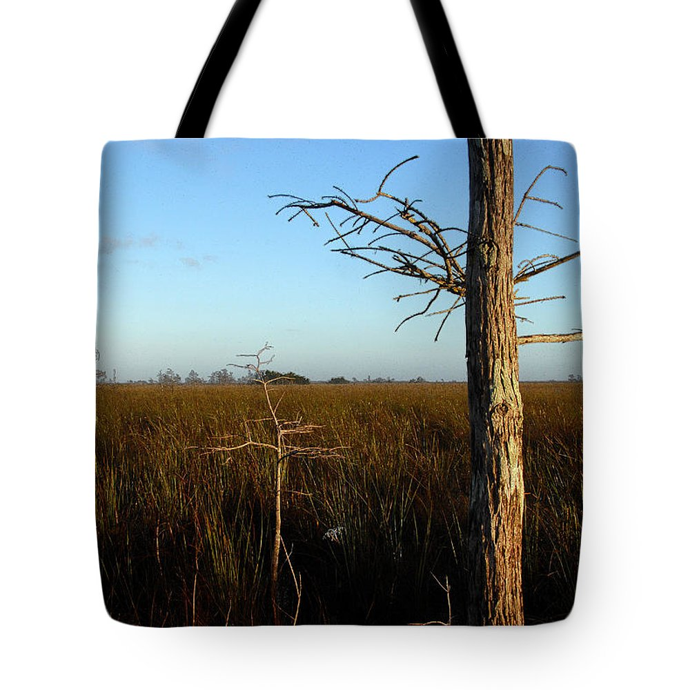 Cypress Trees Tote Bag featuring the painting Winter Cypress by David Lee Thompson