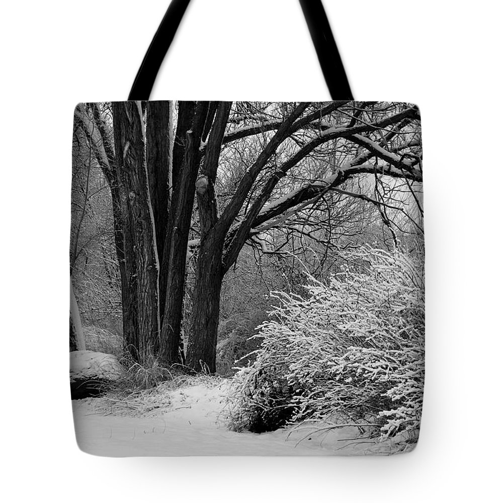 Snowy Landscape Tote Bag featuring the photograph Winter Day - Black And White by Carol Groenen