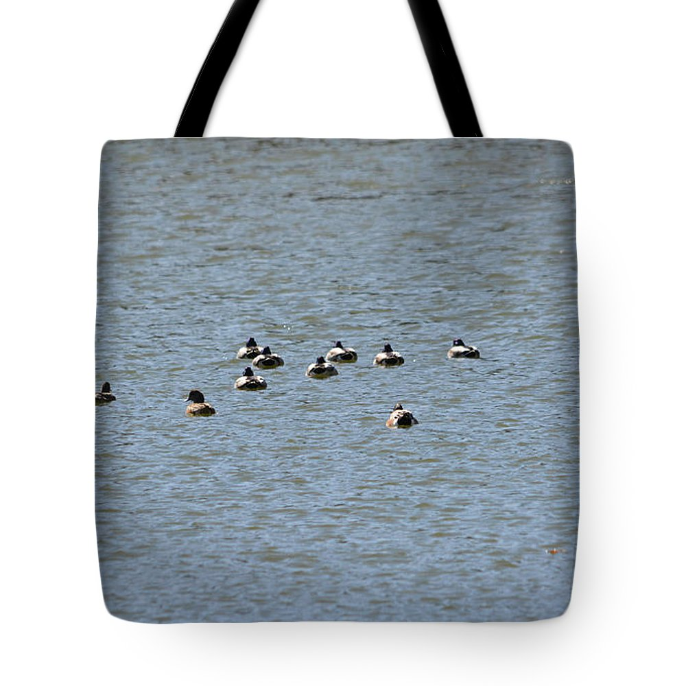 Winter Ducks Swimming Away Tote Bag featuring the photograph Winter Ducks Swimming Away by Ruth Housley