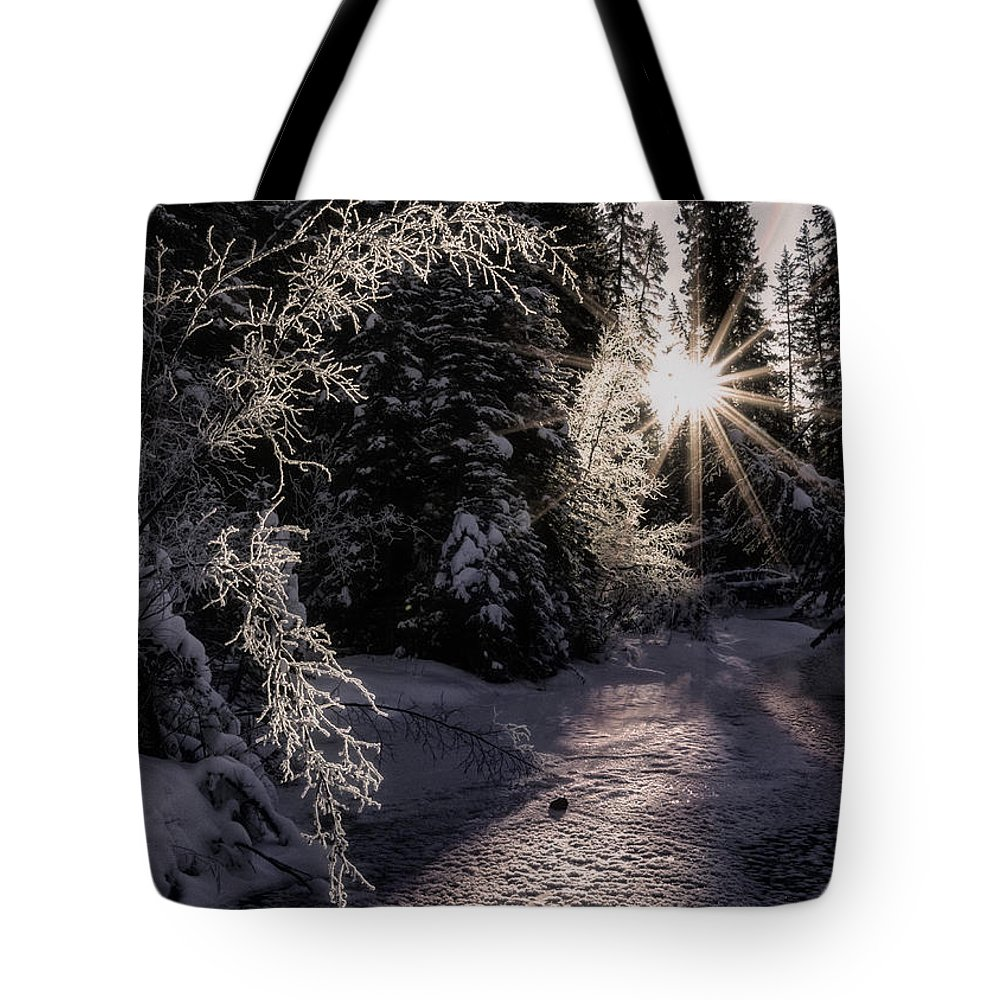 Winter Tote Bag featuring the photograph Winter Evening by Tammy Lauritsen