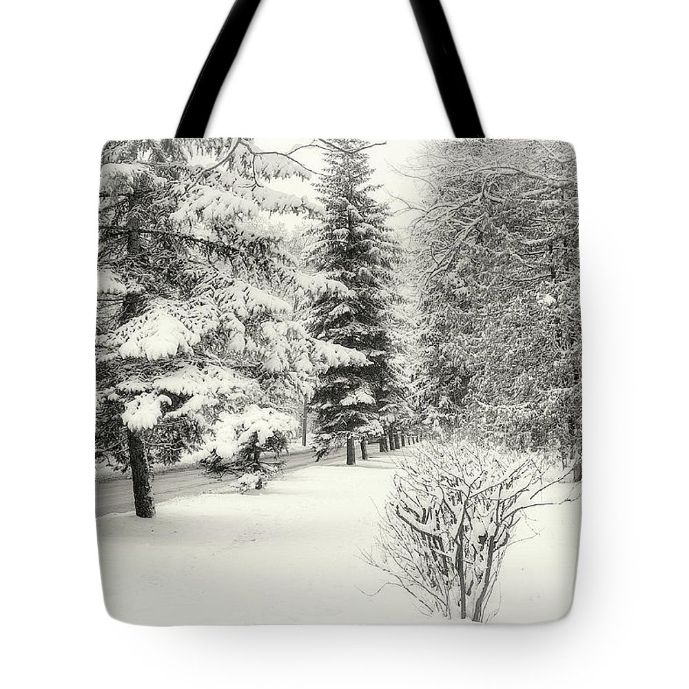 Nature Tote Bag featuring the photograph Winter Fairy Tale. Chernihiv, 2018. by Mayk's PhotoArt