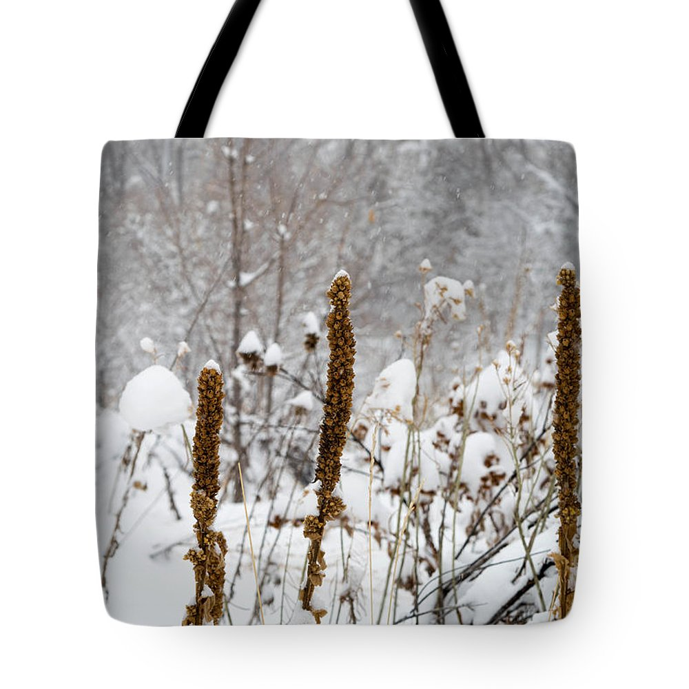 Winter Tote Bag featuring the photograph Winter Frost by Kimberly Noxon