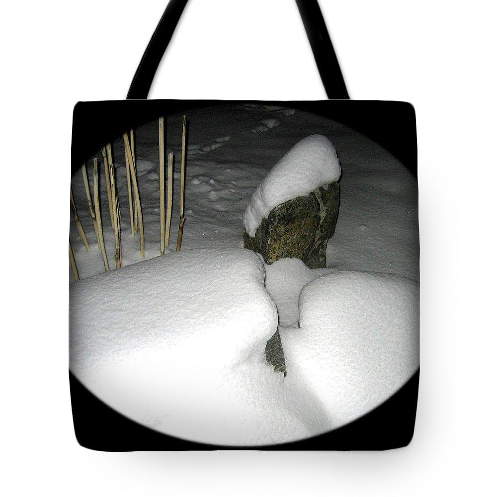 Winter Garden Tote Bag featuring the photograph Winter Garden by Will Borden